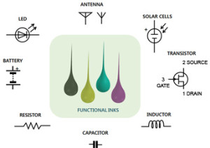 Printable functional materials and devices