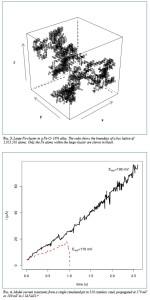 computer_simulation2