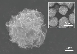 The 5-µm-diameter graphene balls in these scanning electron microscope images contain graphene nanosheets radiating outward from the center.Credit: Chem. Mater.