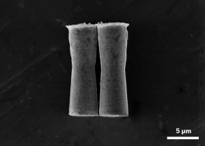 The jet-propelled motors can swim though gastric acid by reducing hydrogen ions into hydrogen gas.Image: ACS Nano