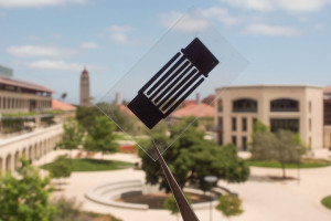"""The """"designer carbon"""" improved the supercapacitor's electrical conductivity threefold compared to electrodes made of conventional activated carbon.Image: Stanford University"""
