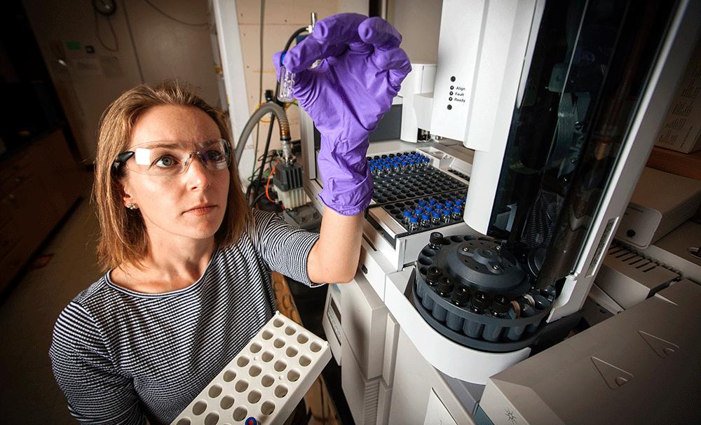 Enzyme-embedded polymer